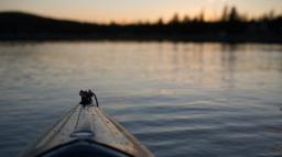 Kayak Morning